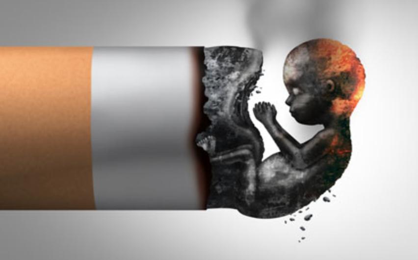 Ilustrasi Bahaya Rokok Terhadap Bayi Dalam Kandungan