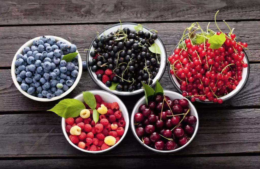 Ilustrasi Buah Berries