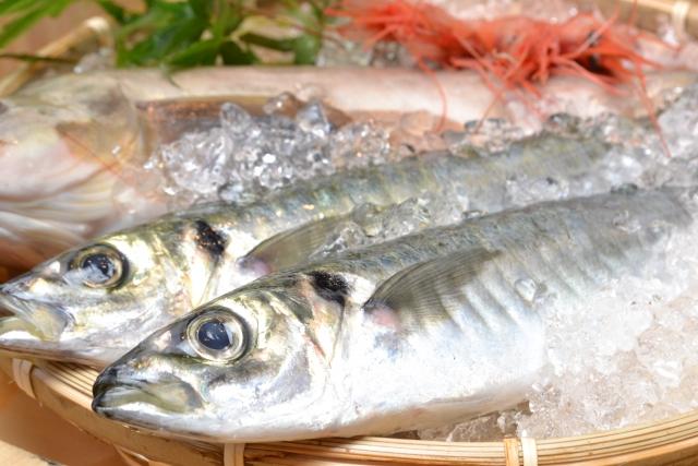 9 Manfaat Makan Ikan Untuk Kesehatan Tubuh Anda